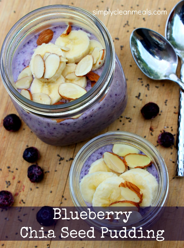 Blueberry Chia Seed Pudding Pin